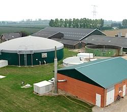 Biogas uit mestvergisting zou zoden aan de dijk kunnen zetten